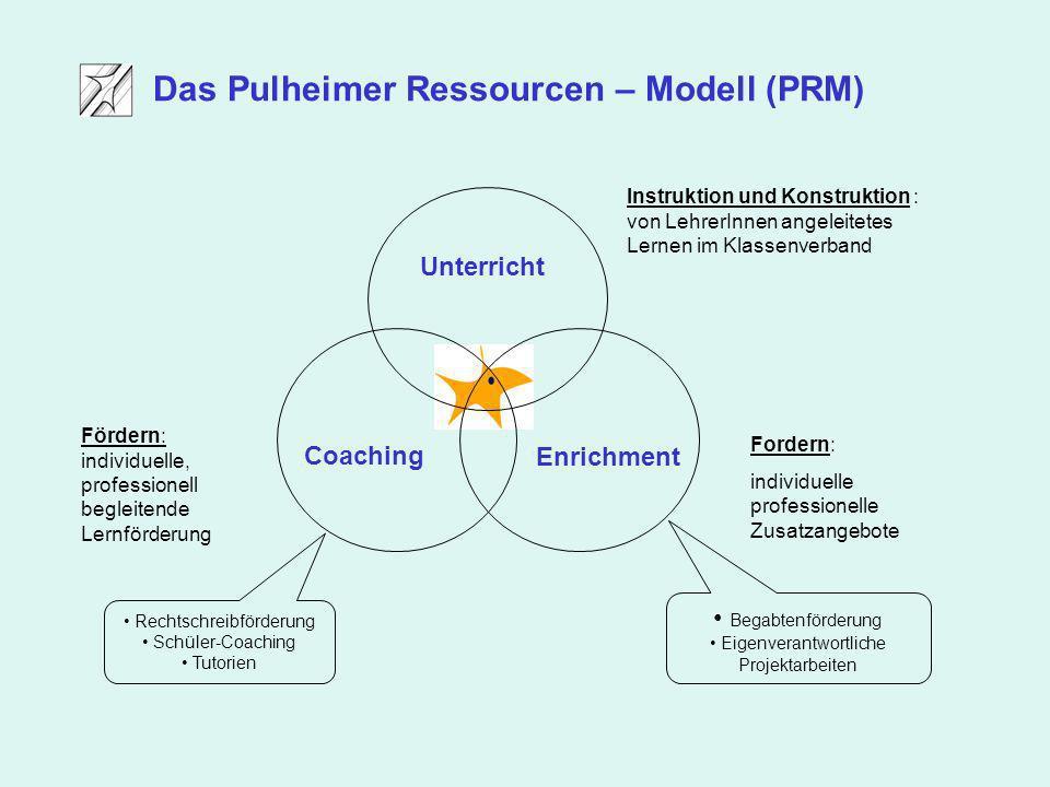 Das Pulheimer Ressourcen – Modell (PRM)