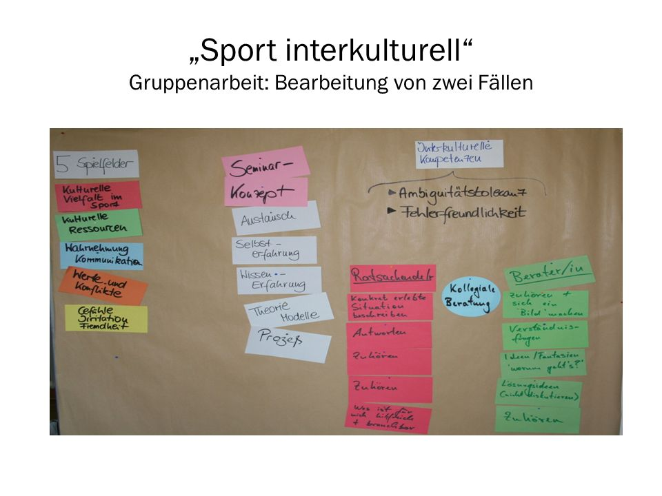 """""""Sport interkulturell Gruppenarbeit: Bearbeitung von zwei Fällen"""