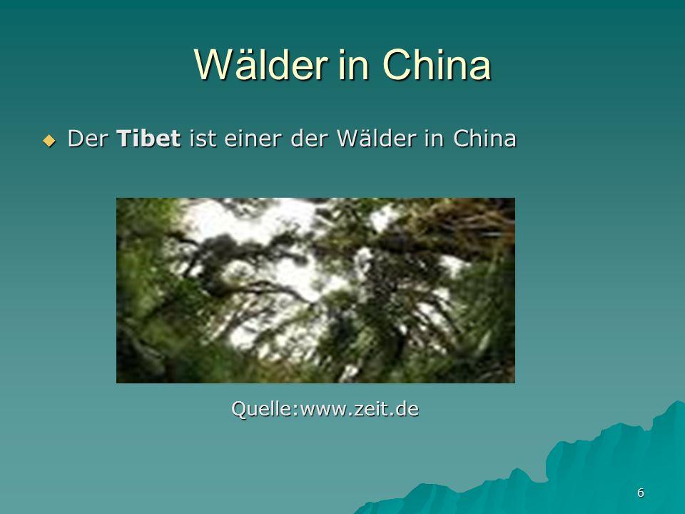 Wälder in China Der Tibet ist einer der Wälder in China