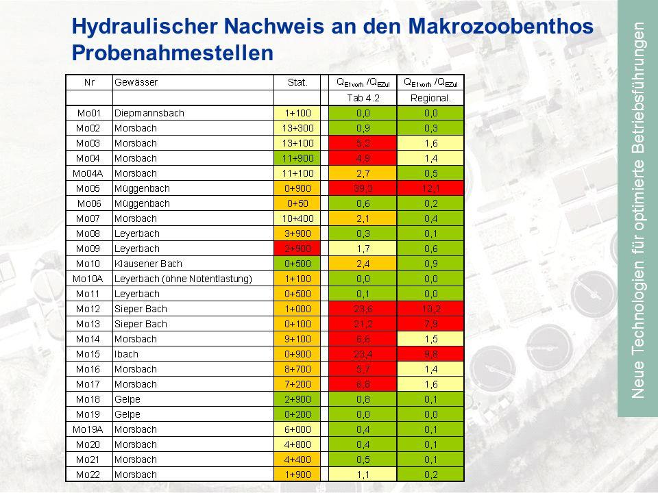 Hydraulischer Nachweis an den Makrozoobenthos Probenahmestellen