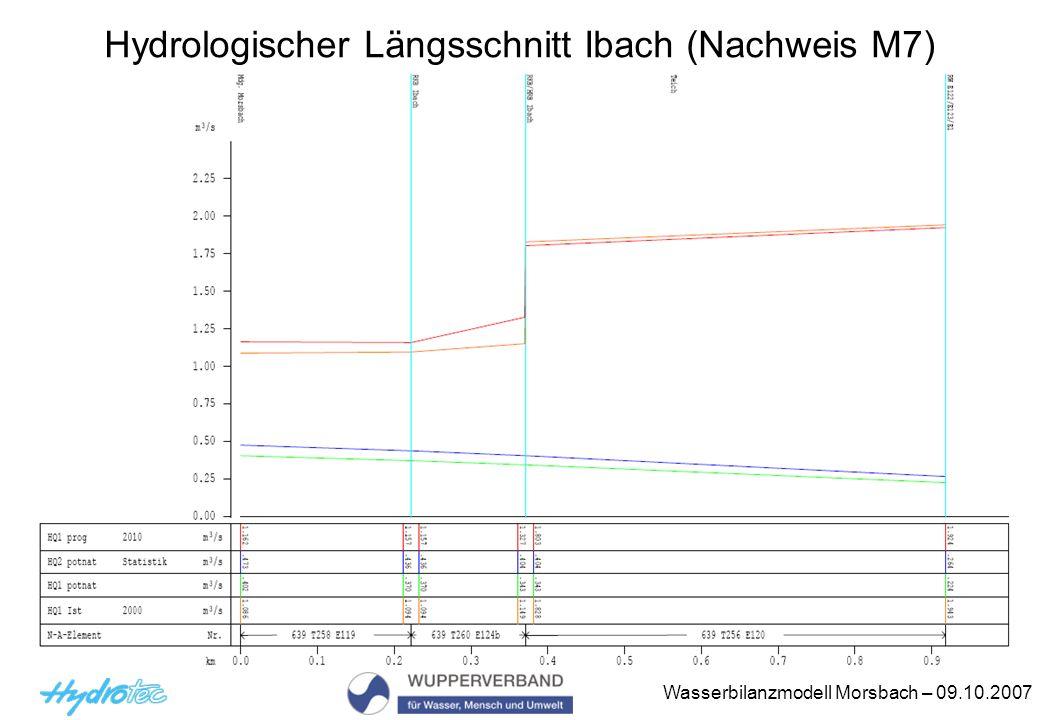 Hydrologischer Längsschnitt Ibach (Nachweis M7)