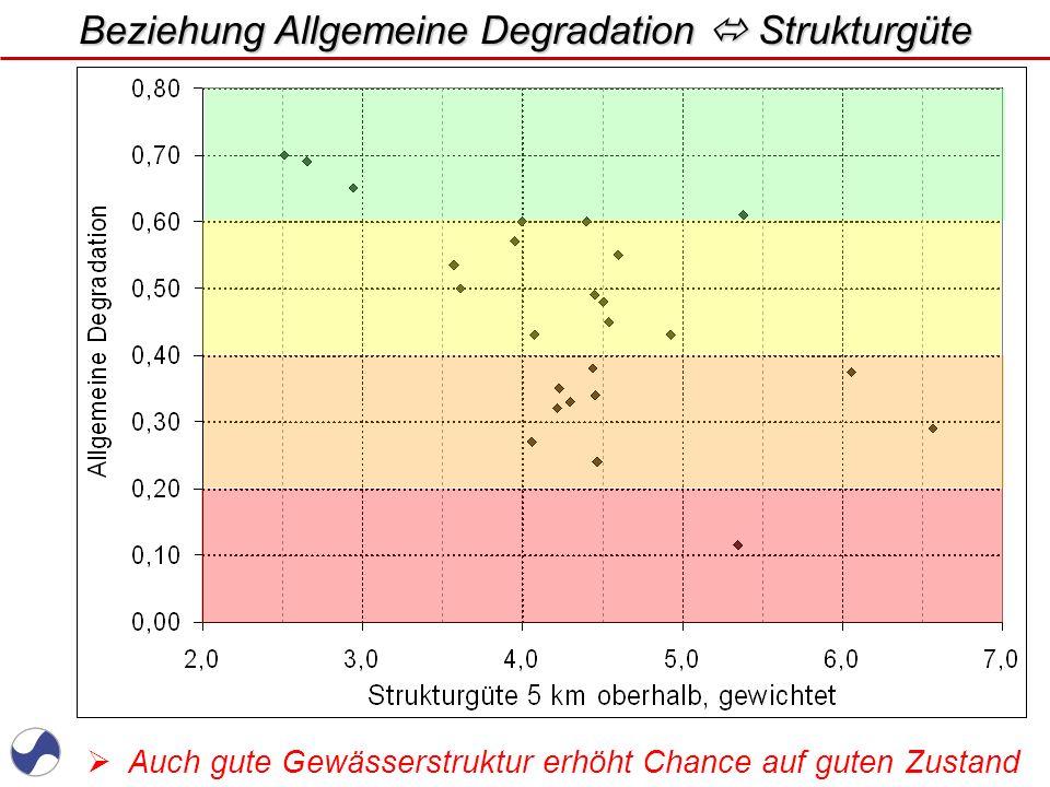 Beziehung Allgemeine Degradation  Strukturgüte