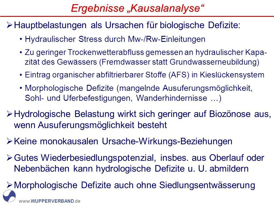 "Ergebnisse ""Kausalanalyse"