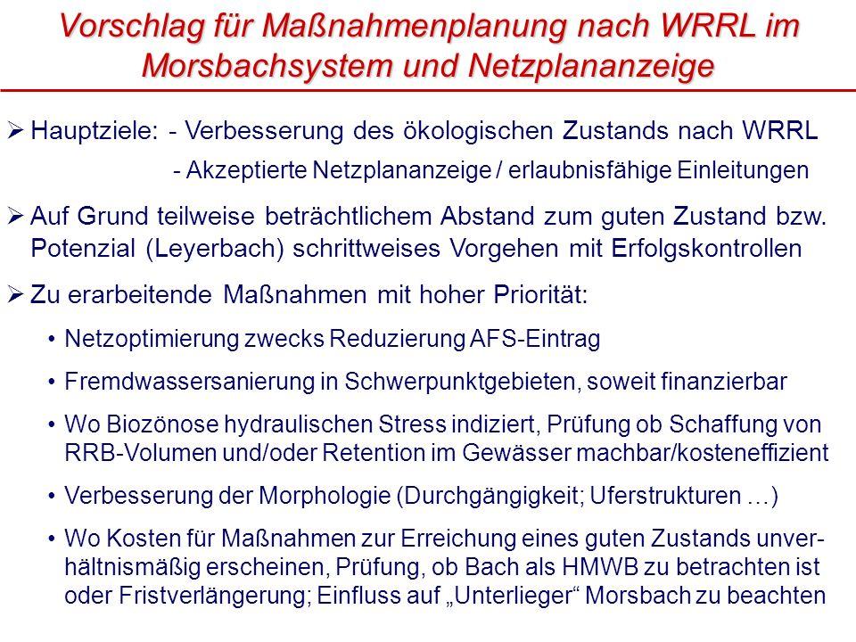 Vorschlag für Maßnahmenplanung nach WRRL im Morsbachsystem und Netzplananzeige