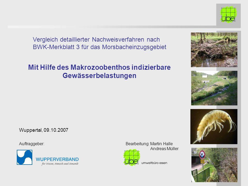 Mit Hilfe des Makrozoobenthos indizierbare Gewässerbelastungen
