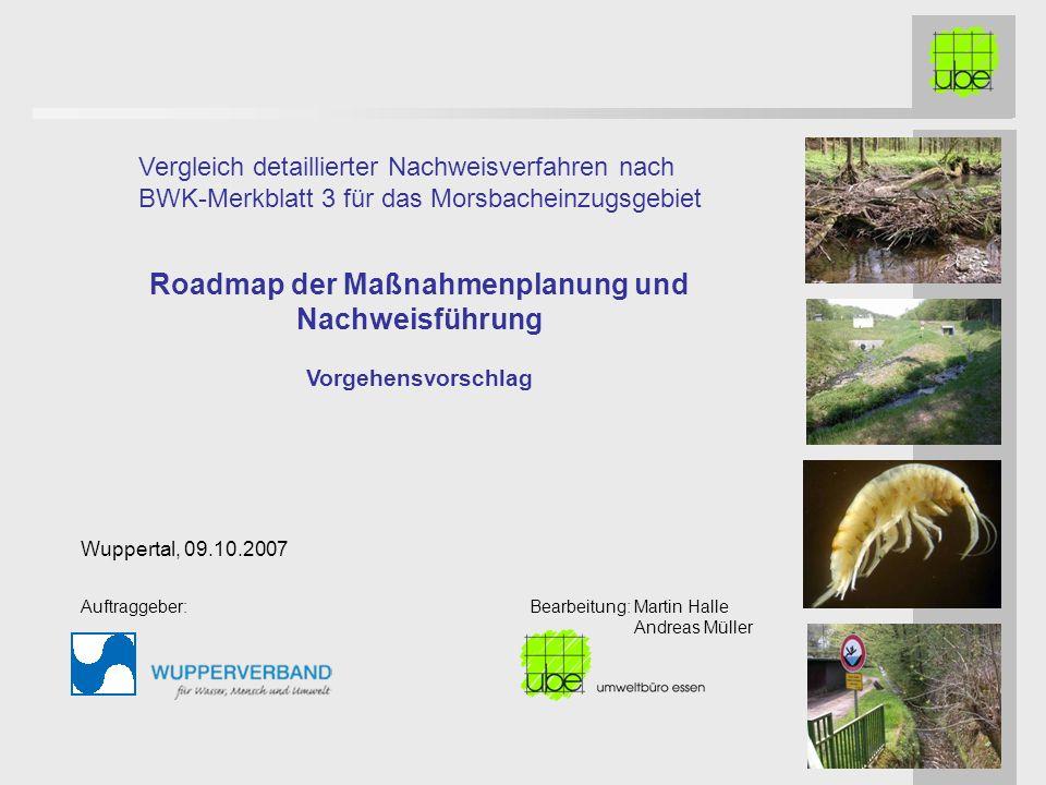 Roadmap der Maßnahmenplanung und Nachweisführung