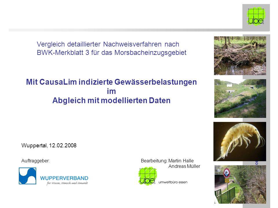 Mit CausaLim indizierte Gewässerbelastungen im