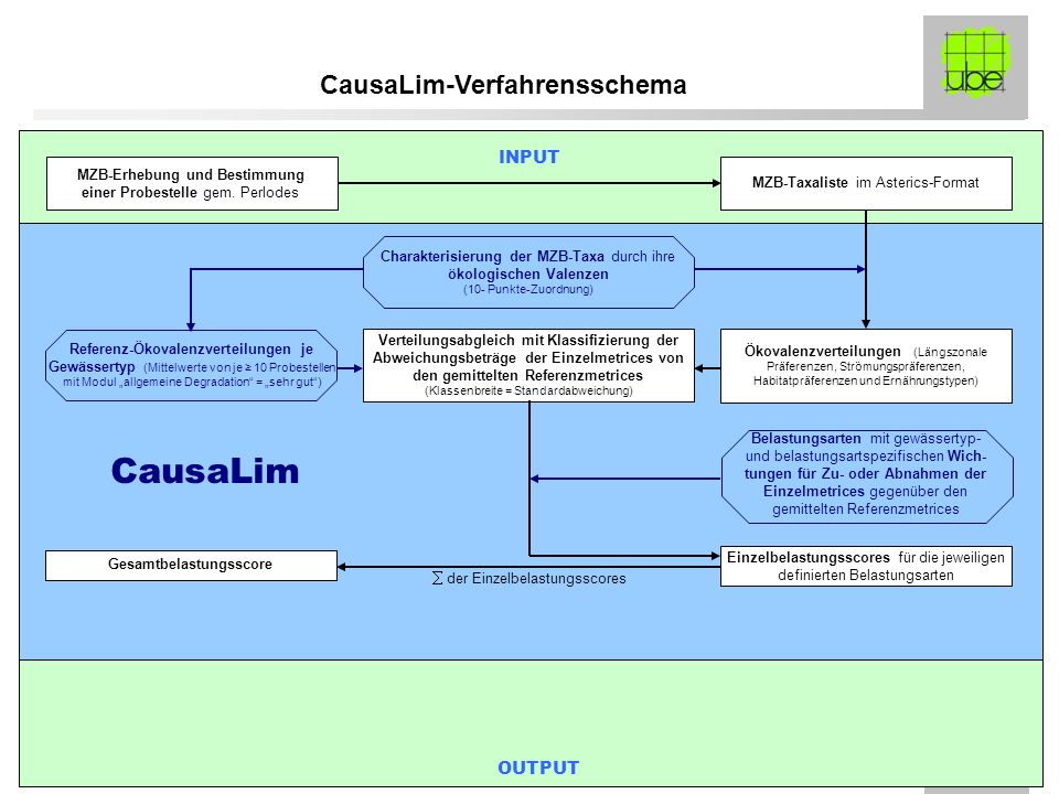 CausaLim-Verfahrensschema Gesamtbelastungsscore