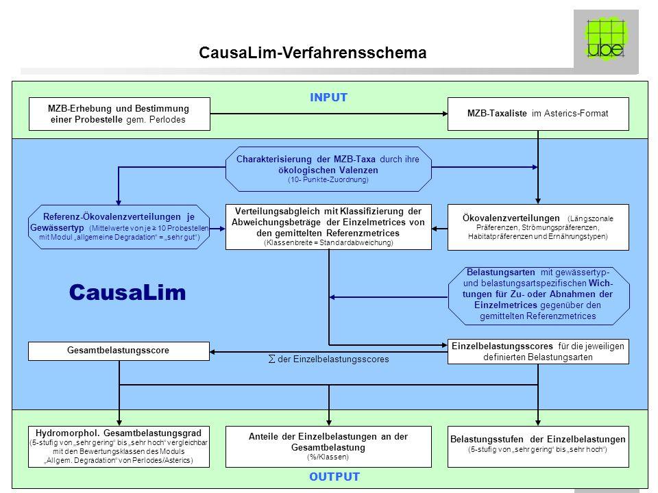 CausaLim CausaLim-Verfahrensschema INPUT OUTPUT