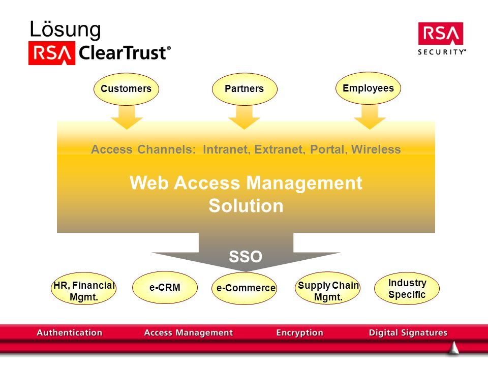 Access Channels: Intranet, Extranet, Portal, Wireless