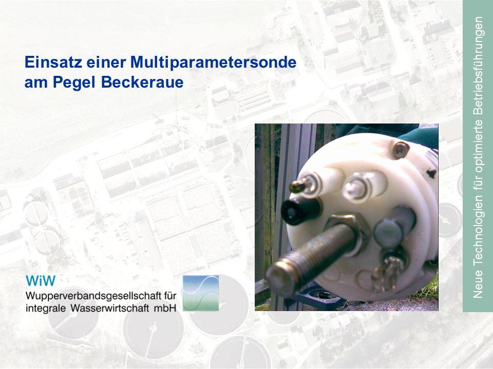 Einsatz einer Multiparametersonde am Pegel Beckeraue