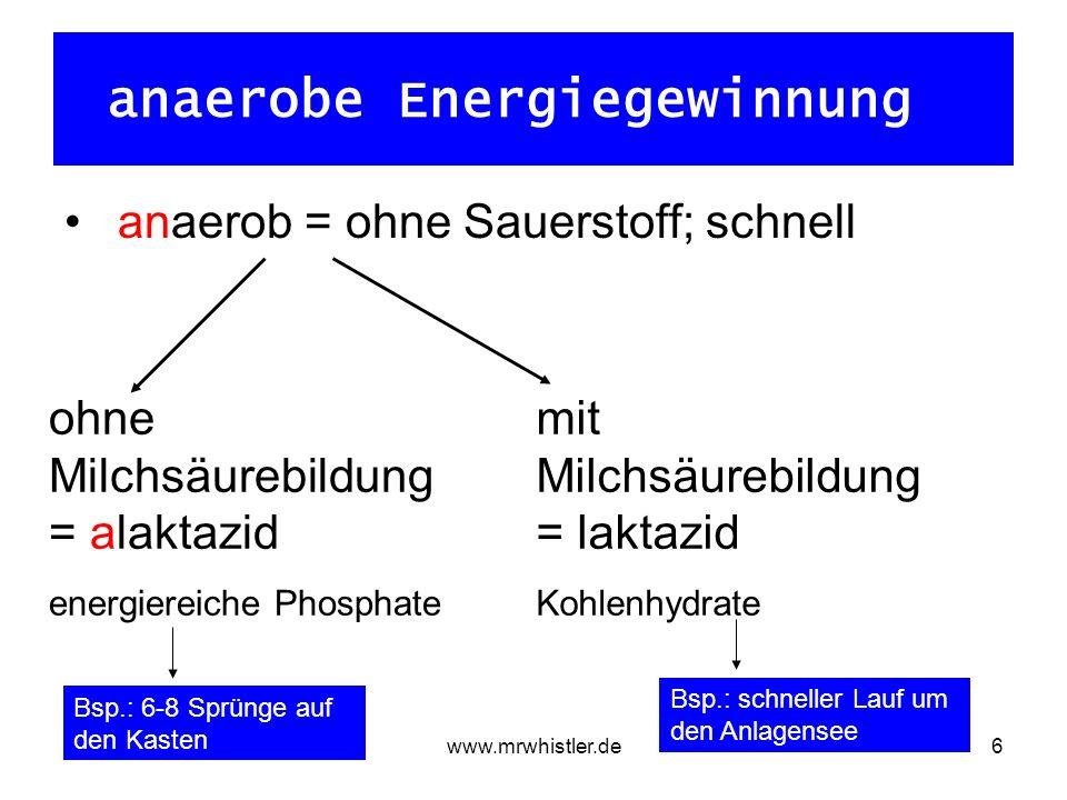 anaerobe Energiegewinnung