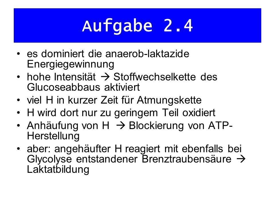 Aufgabe 2.4 es dominiert die anaerob-laktazide Energiegewinnung