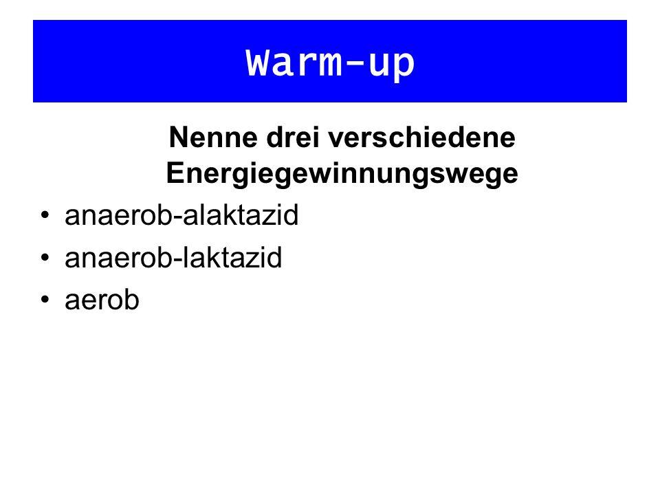 Nenne drei verschiedene Energiegewinnungswege