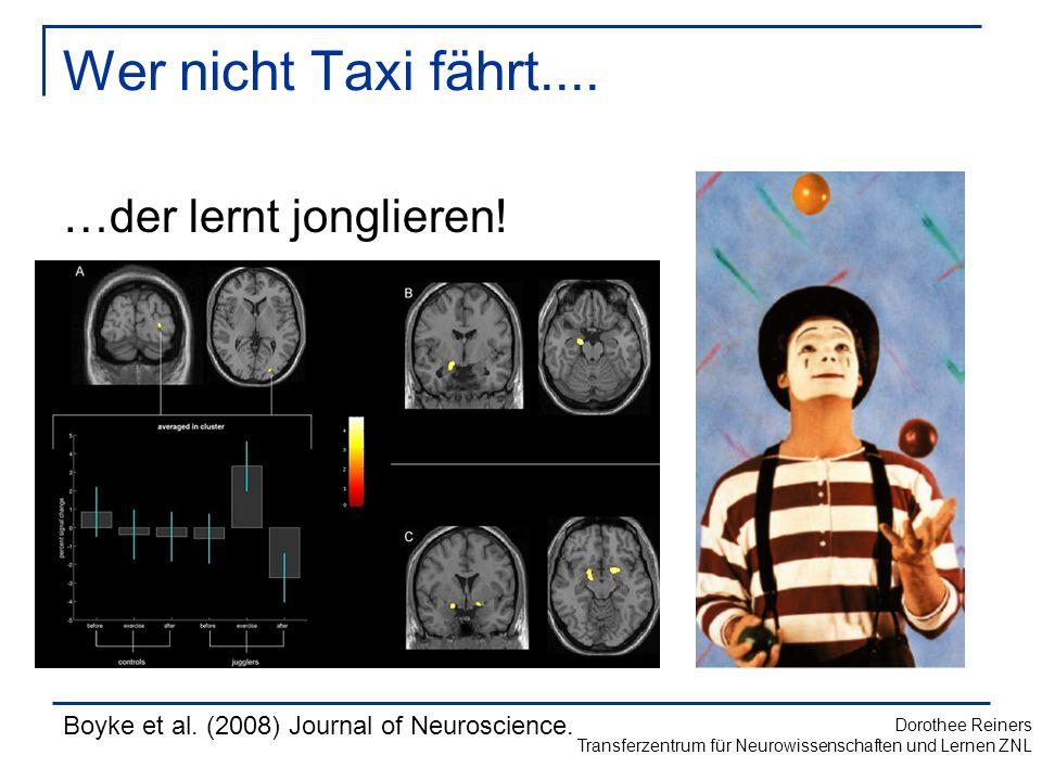 Wer nicht Taxi fährt.... …der lernt jonglieren!