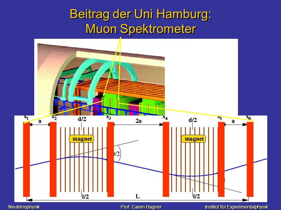 Beitrag der Uni Hamburg: Muon Spektrometer