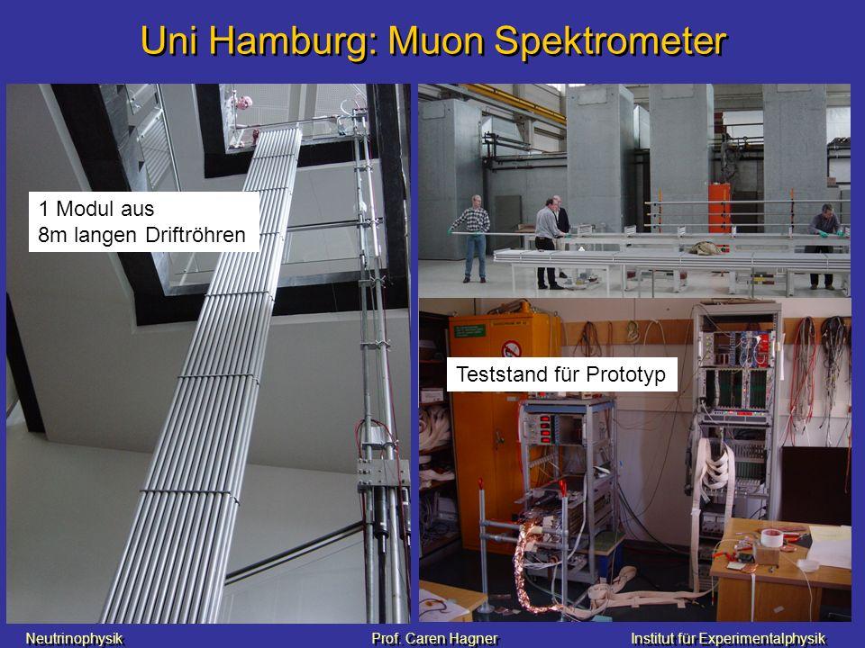 Uni Hamburg: Muon Spektrometer