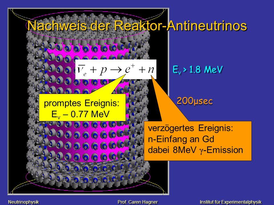 Nachweis der Reaktor-Antineutrinos
