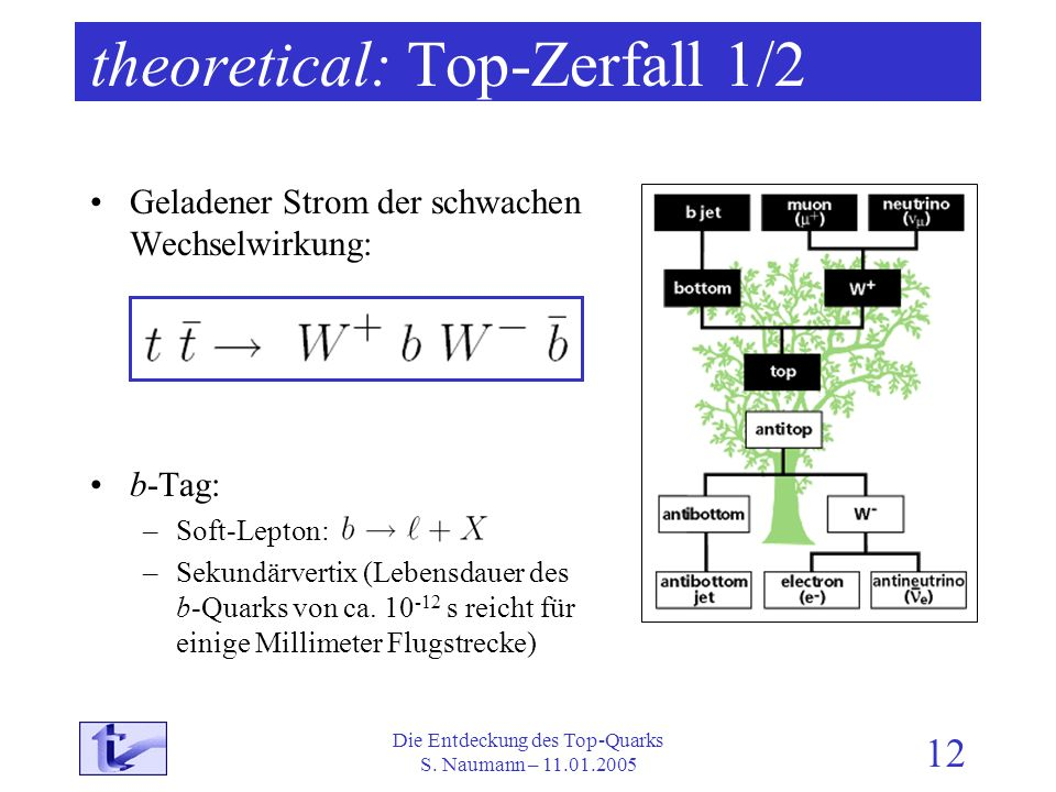 theoretical: Top-Zerfall 1/2