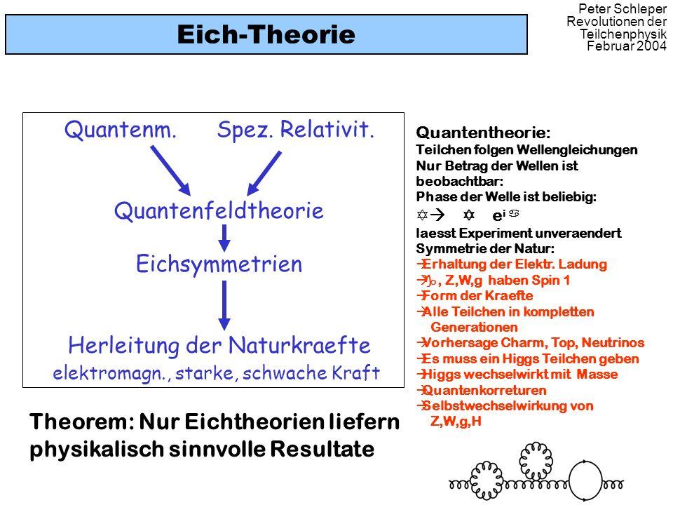 Eich-Theorie Quantenm. Spez. Relativit. Quantenfeldtheorie