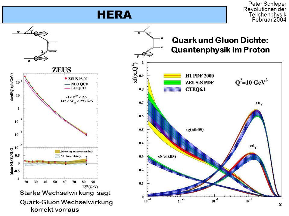 HERA Quark und Gluon Dichte: Quantenphysik im Proton