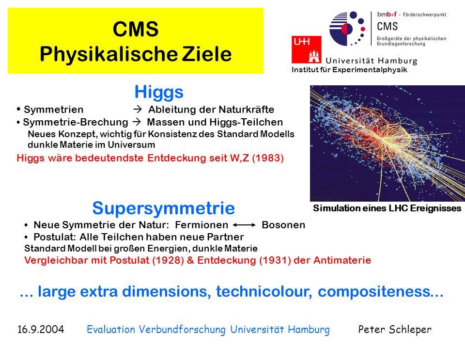 CMS Physikalische Ziele