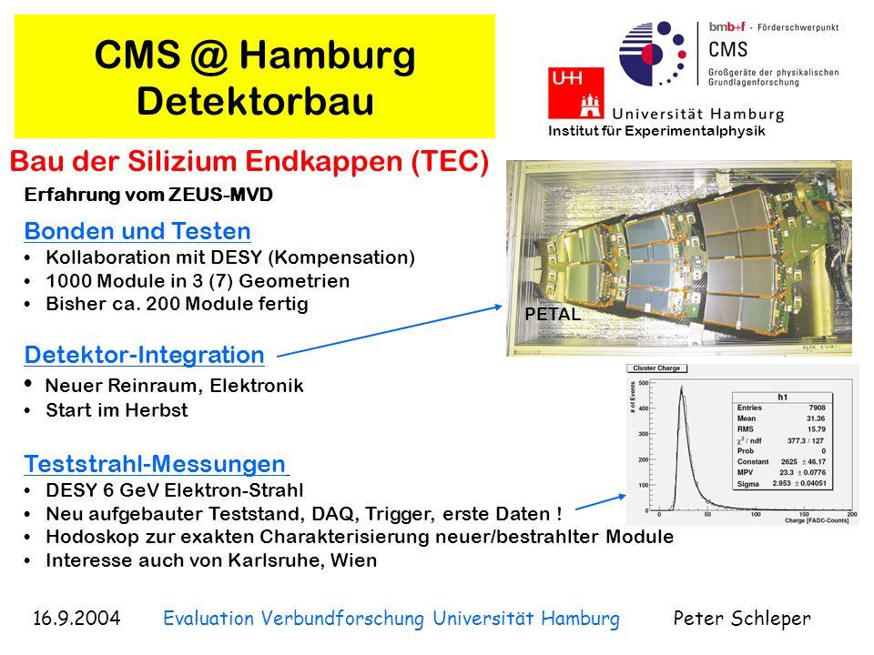 CMS @ Hamburg Detektorbau