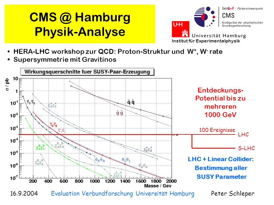 CMS @ Hamburg Physik-Analyse