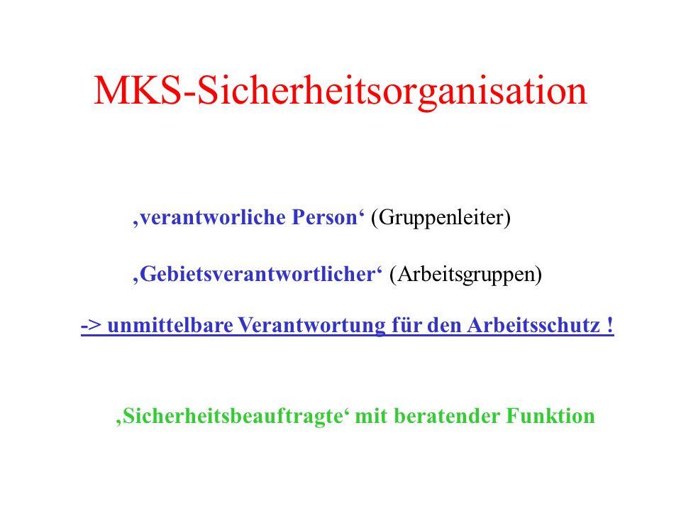 MKS-Sicherheitsorganisation