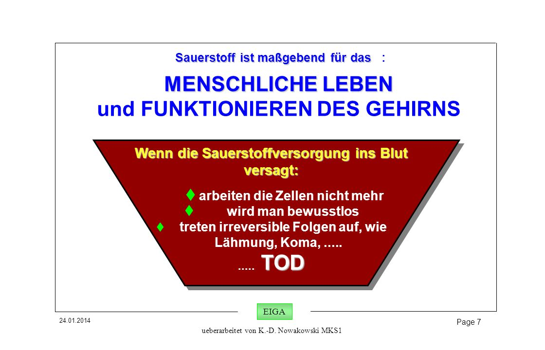 MENSCHLICHE LEBEN und FUNKTIONIEREN DES GEHIRNS