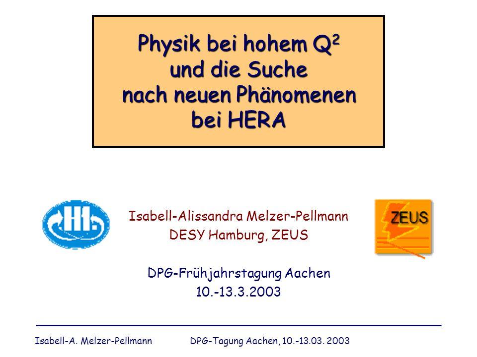 Physik bei hohem Q2 und die Suche nach neuen Phänomenen bei HERA