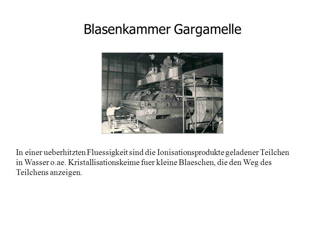 Blasenkammer Gargamelle