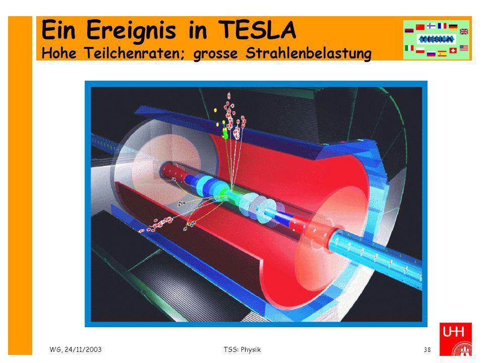 Ein Ereignis in TESLA Hohe Teilchenraten; grosse Strahlenbelastung