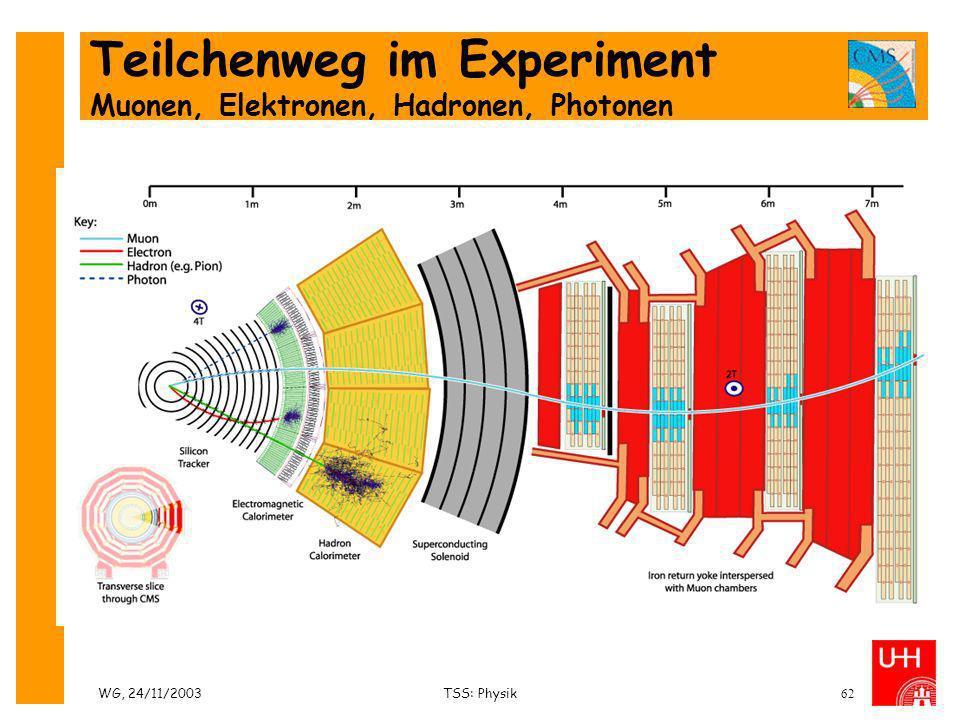 Teilchenweg im Experiment Muonen, Elektronen, Hadronen, Photonen