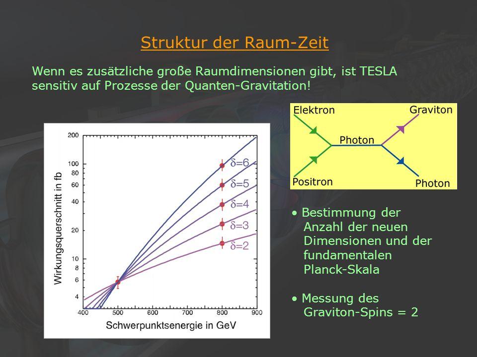 Struktur der Raum-Zeit