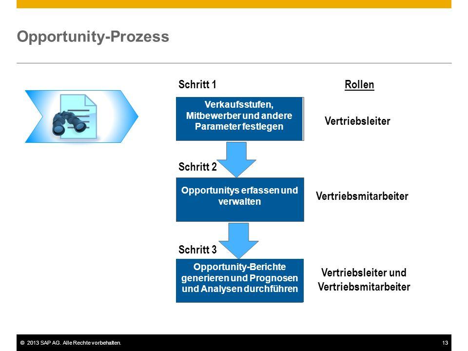 Opportunity-Prozess Schritt 1 Rollen Vertriebsleiter Schritt 2