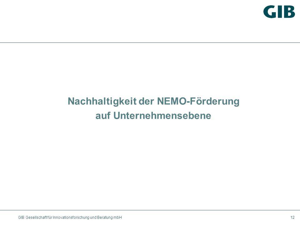 Nachhaltigkeit der NEMO-Förderung auf Unternehmensebene