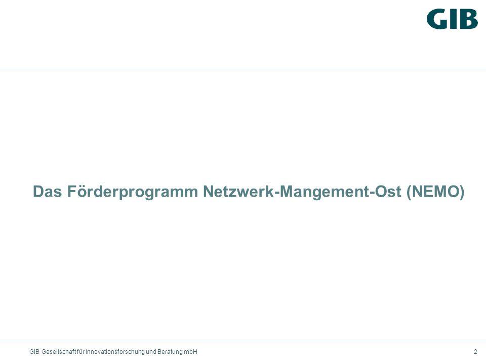 Das Förderprogramm Netzwerk-Mangement-Ost (NEMO)