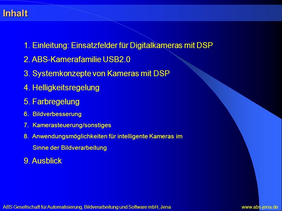 Inhalt 1. Einleitung: Einsatzfelder für Digitalkameras mit DSP