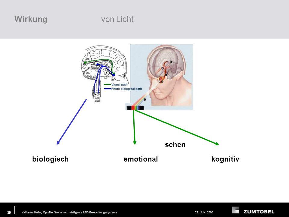 Wirkung von Licht sehen biologisch emotional kognitiv