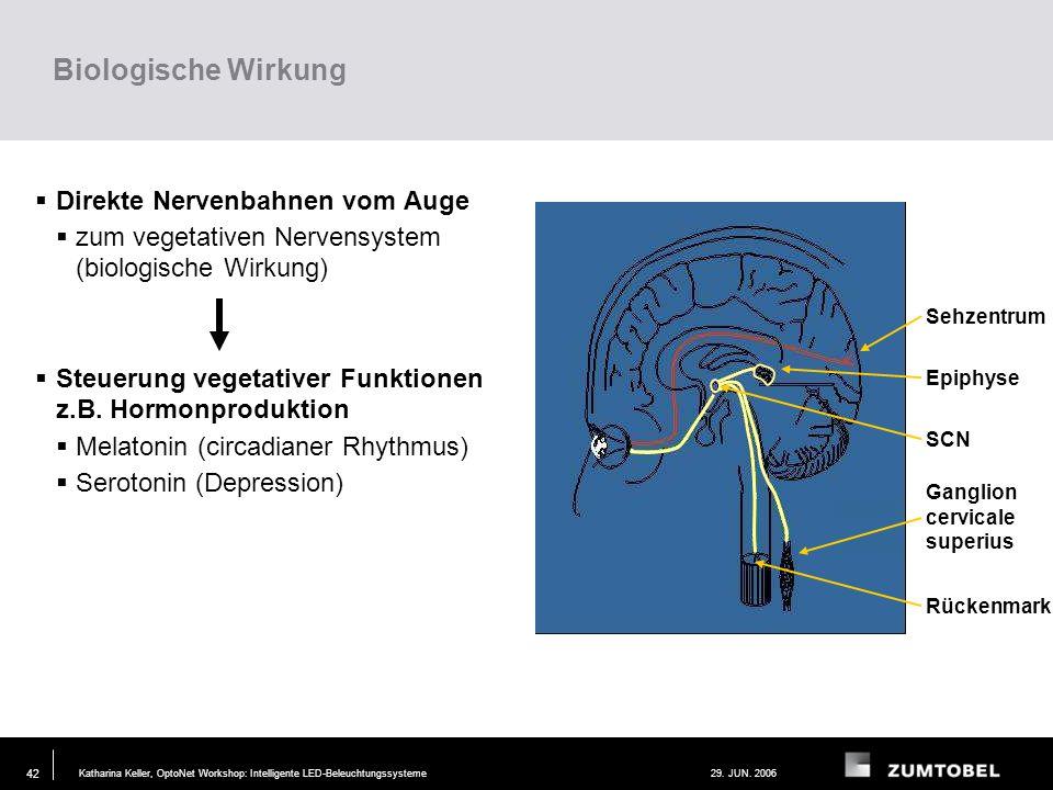 Biologische Wirkung Direkte Nervenbahnen vom Auge