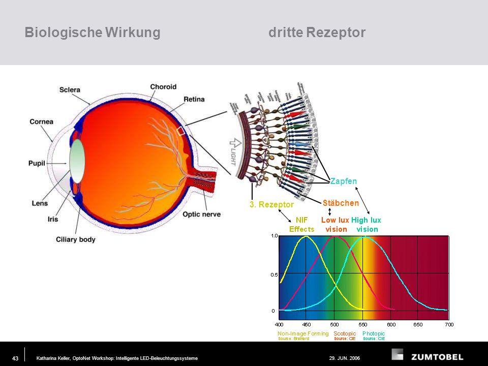 Biologische Wirkung dritte Rezeptor