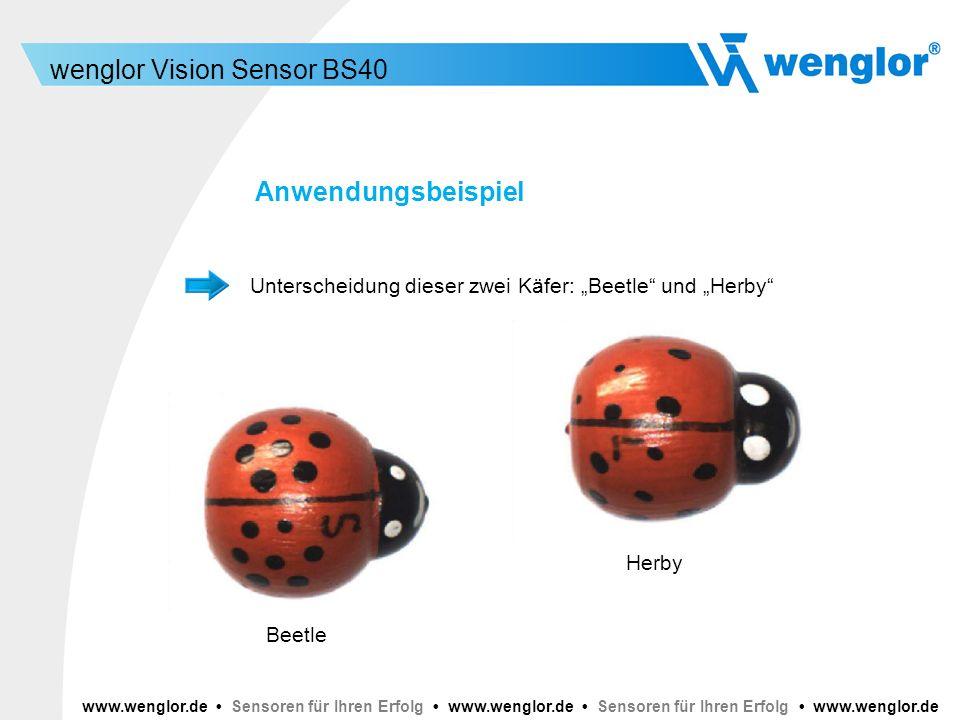 """Anwendungsbeispiel Unterscheidung dieser zwei Käfer: """"Beetle und """"Herby Herby. Beetle."""