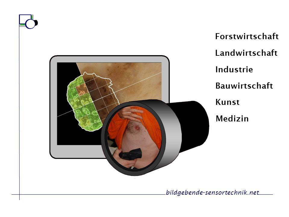 Forstwirtschaft Landwirtschaft Industrie Bauwirtschaft Kunst Medizin