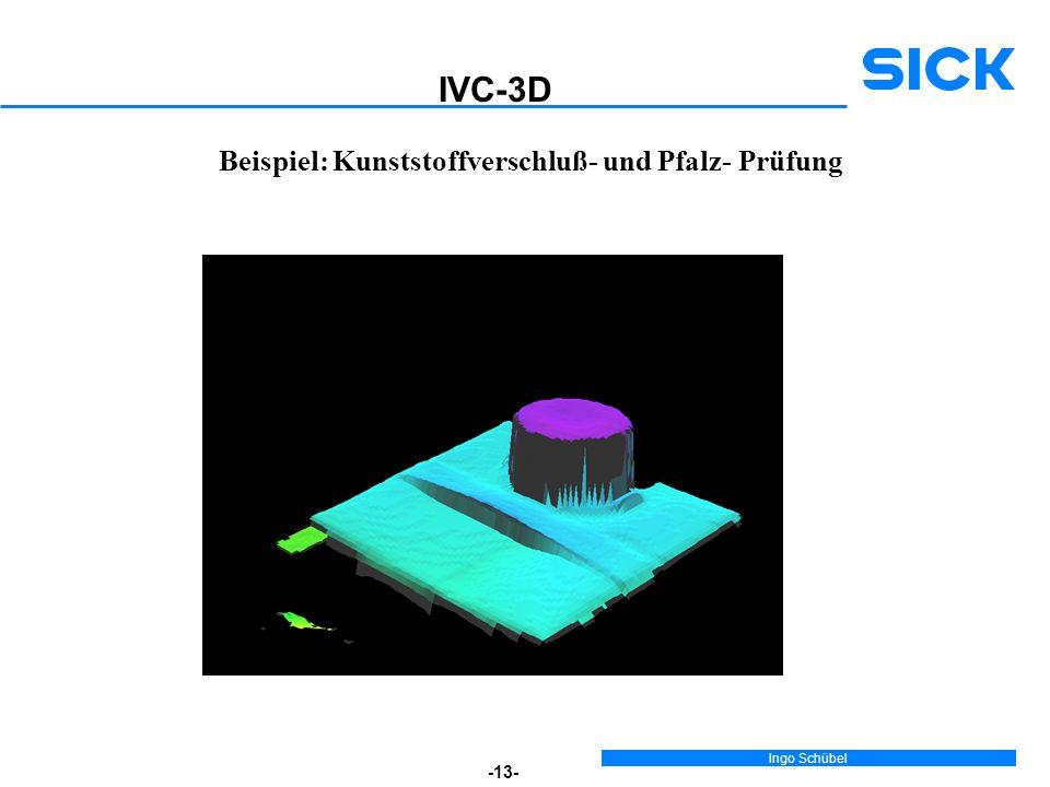 IVC-3D Beispiel: Kunststoffverschluß- und Pfalz- Prüfung