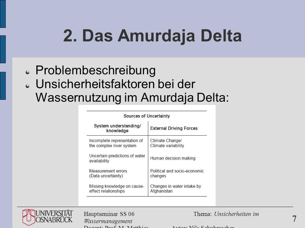 2. Das Amurdaja Delta Problembeschreibung