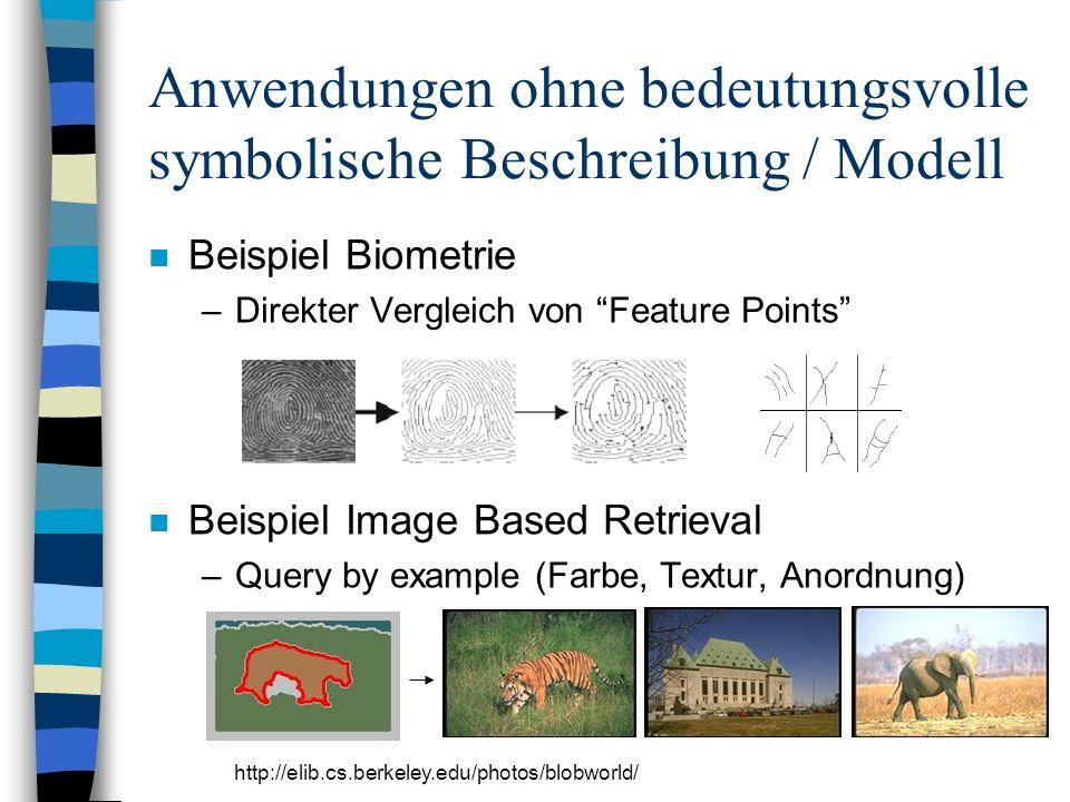 Anwendungen ohne bedeutungsvolle symbolische Beschreibung / Modell