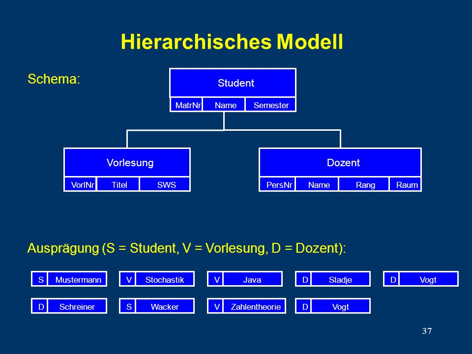 Hierarchisches Modell