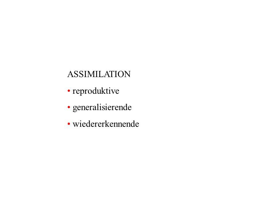 ASSIMILATION reproduktive generalisierende wiedererkennende