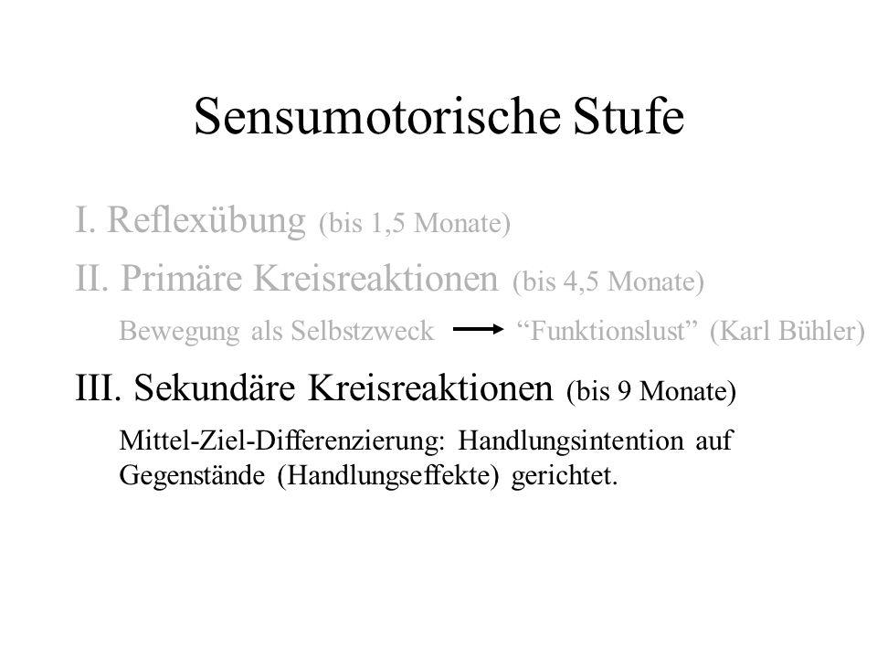 Sensumotorische Stufe